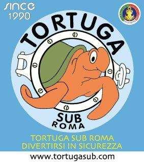 tortuga_tube